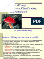 (10) Fungal Classification, Structure, And Replication