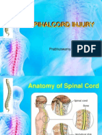Spinal Cord Injury....