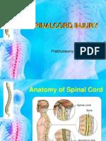 Spinal Cord Injury....