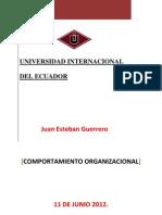 Descripción General de la empresa Juan guerrero