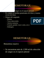 Hemotorax Fin