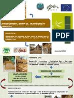 Presentación bambú1