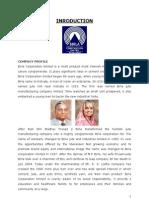 Birla Cement Project Ankit Singh