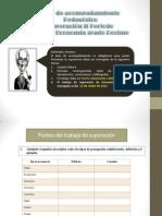Pap Economia 10 2periodo
