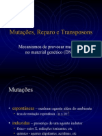 Mutacaoes Reparo e Transposons