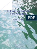 Hydrogen and Fuel Cells in the Netherlands