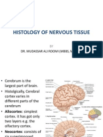 5. Lecture on the Histology of Cerebrum and Meninges by Dr. Roomi