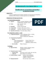 P7Estudio-Macro Rocas Sedimentarias
