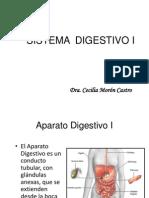 Digestivo i