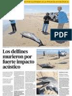 1 500 delfines mueren en costas del Perú