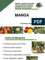 Seminário 1 - Fruticultura