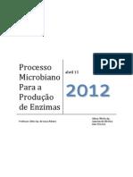 PROCESSOS MICROBIANOS PARA PRODUÇÃO DE ENZIMAS
