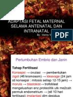 Adaptasi Fetal Maternal Selama Antenatal Dan Intranatal Yg Dipake