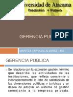 Gerencia Publica Unidad 1 Final