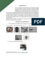 Informe de Pendulo Simple(2)