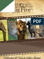 Big Five Tours and Safaris