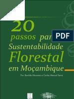 20 Passos Para a Sustentabilidade Florestal Em Mocambique