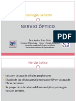 nerviooptico-100503033400-phpapp02(1)