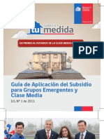 Guia de Aplicaciión Subsidio DS1