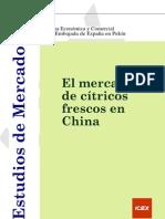 Estudio de Mercado China