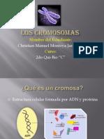 El Cromosoma