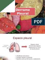 04 - Derrame Pleural