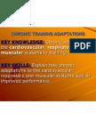 chapter 11 training adaptations