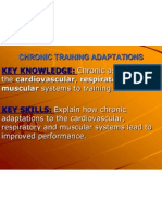 chapter 11 training adaptations