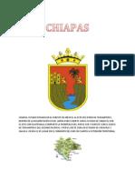Resumen Del Estado de Chiapas