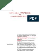 06 Patologias y Proteccion de La Madera