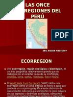 LAS ONCE ECOREGIONES DEL PERÚ