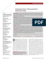The Oculomotor Nerve Microanatomical and.23