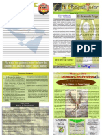 """Boletín Semanal """"El Conquistador"""" Enero 04, 2009"""