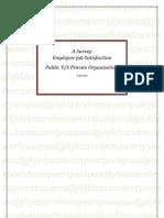 A Survey on Employees' Job Satisfaction