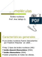 2012 Biomoléculas acidos nucleicos