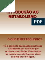 Introducao Ao Metabolismo