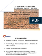 RAPCO 2009- CENIACUA Tilapia Roja Agua Marina + Biofloc