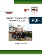DIAGNÓSTICO AMBIENTAL LOCAL - LUYA.pdf