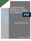 La protección del derecho de autor y los derechos conexos en el ambito penal sep 15 de 2010