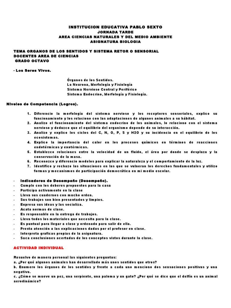 Contemporáneo Anatomía Y Fisiología Especial Sentidos Cuestionario ...