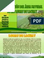 lachay3