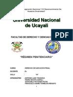 TRABAJO ORIGINAL DE DERECHO DE EJECUCIÒN PENAL