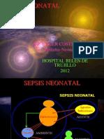 Exposicion Sepsis Neonatal