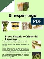 1- PresentaciónEsparragofresco
