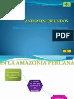 ANIMALES ORIUNDOS de Jean Paul Morante 3A
