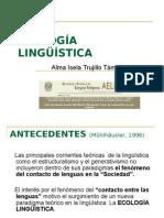 a1n1 Trujillo Tamez Np01