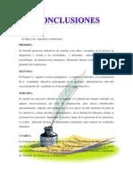 Conclusion Para Imprimir