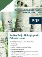 Bahaya Biologis Pada Pekerja Hutan