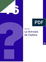 Artrosisi de Cadera