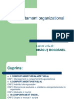 1. Comportamentul Organizational
